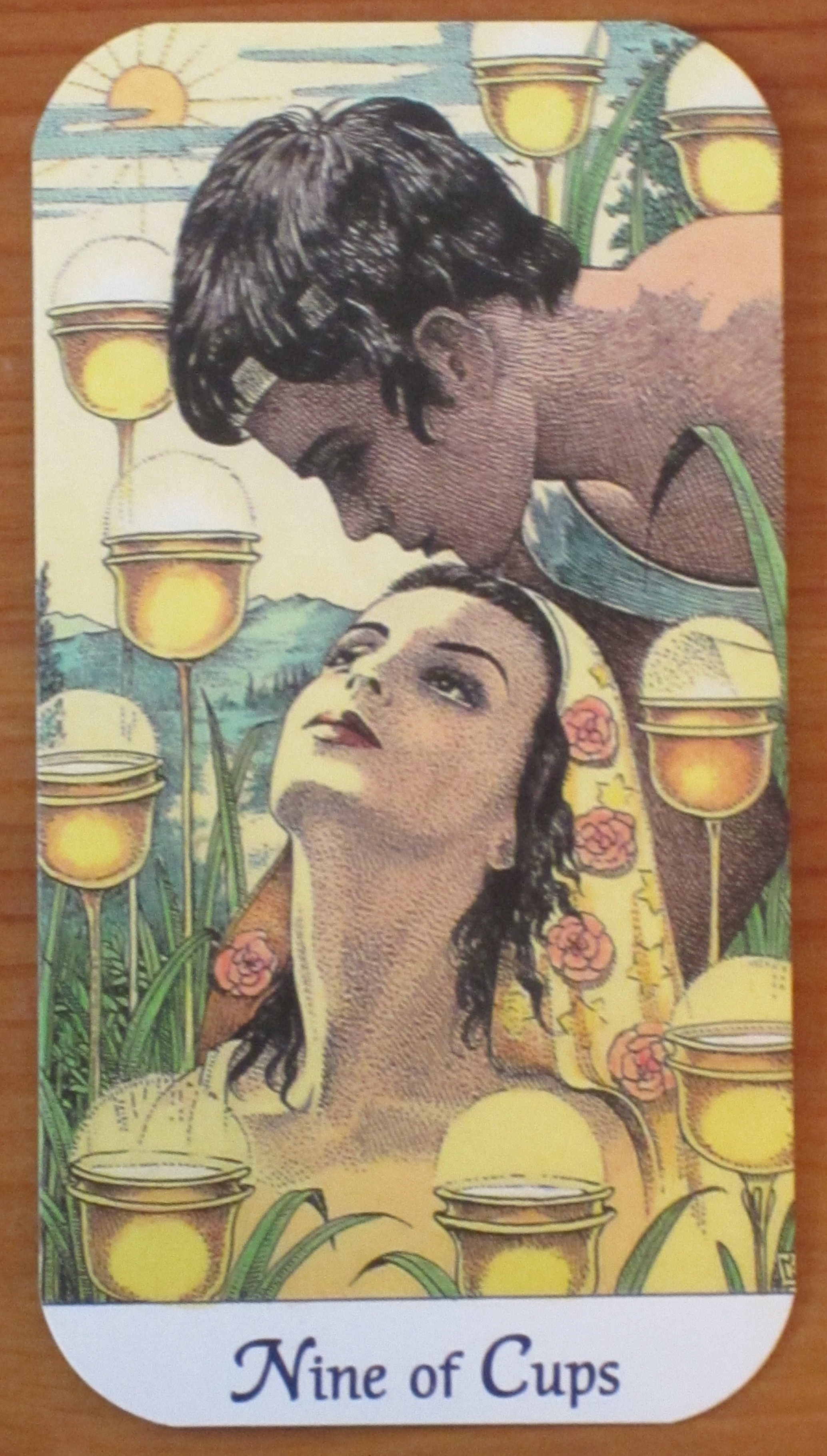 nine of cups | Daily Tarot Girl